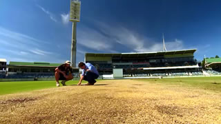 WACA Pitch and lawn tips