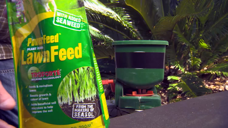 PowerFeed LawnFeed: Seasol-12
